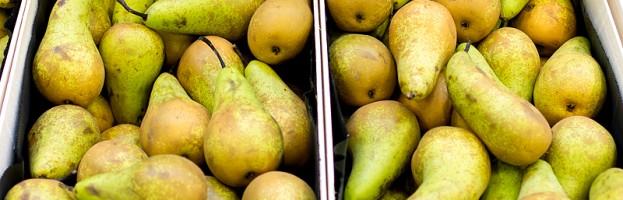 Unsere Früchte
